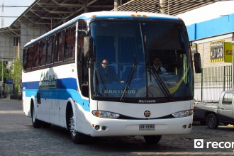 Buses Libac
