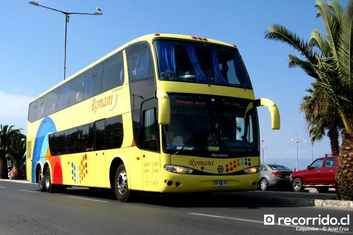 Buses Romani