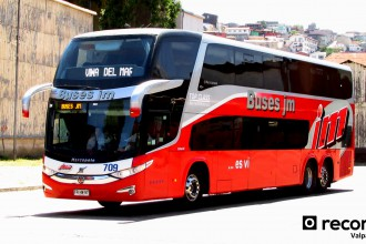 Buses JM