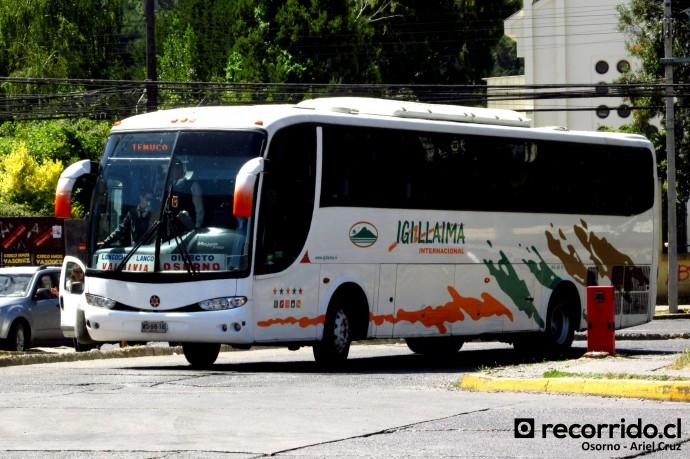 Buses Igillaima Internacional & Narbus