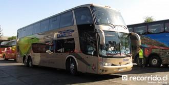 Buses Cruzmar