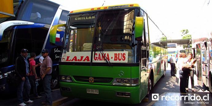 Buses Gama Bus