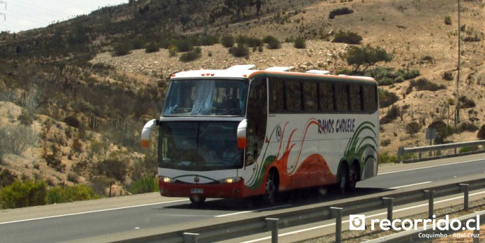 Buses Ramos Cholele