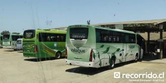 terminal pichilemu - transantin - nilahue - roma 350 - roma 370