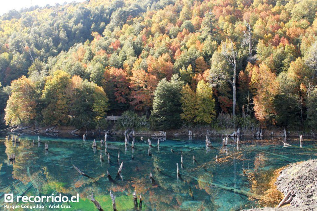 Laguna Arcoiris en Parque Nacional Conguillío