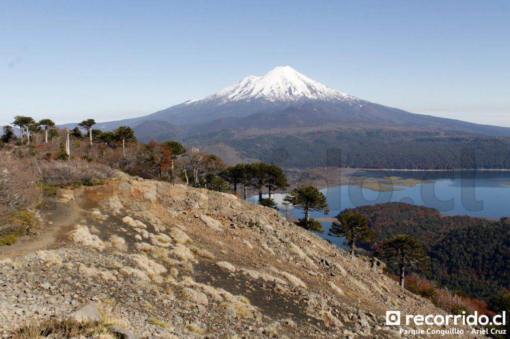 Vista del Volcán Llaima desde sendero Sierra Nevada